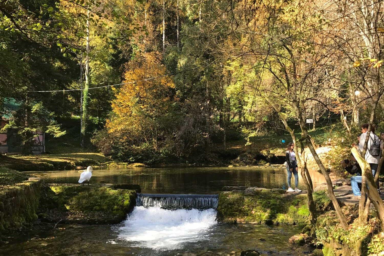Spring of River Bosna